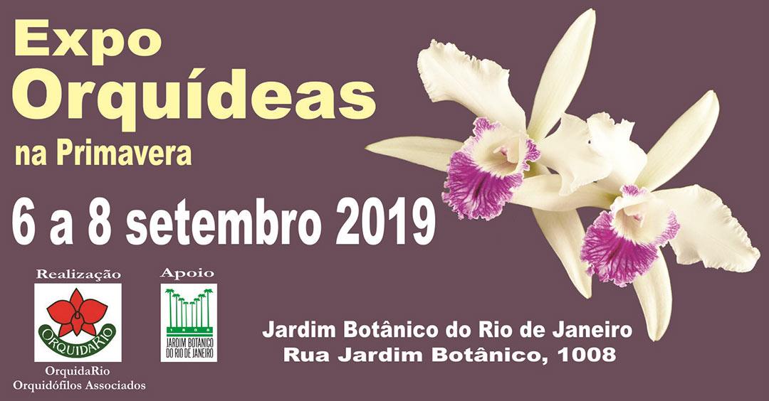 Imagem promocional do evento Expo Orquídeas de Primavera, que ocorre de 6 a 8 de setembro de 2019.